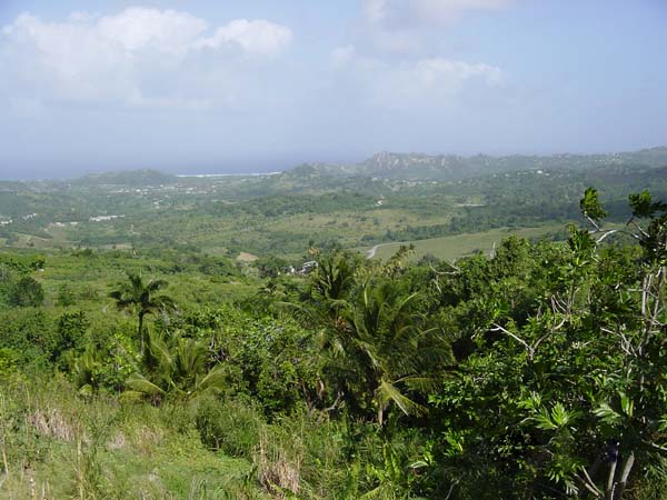 Vy över Barbados